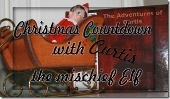 Curtis the Elf….Countdown to Christmas Day 24