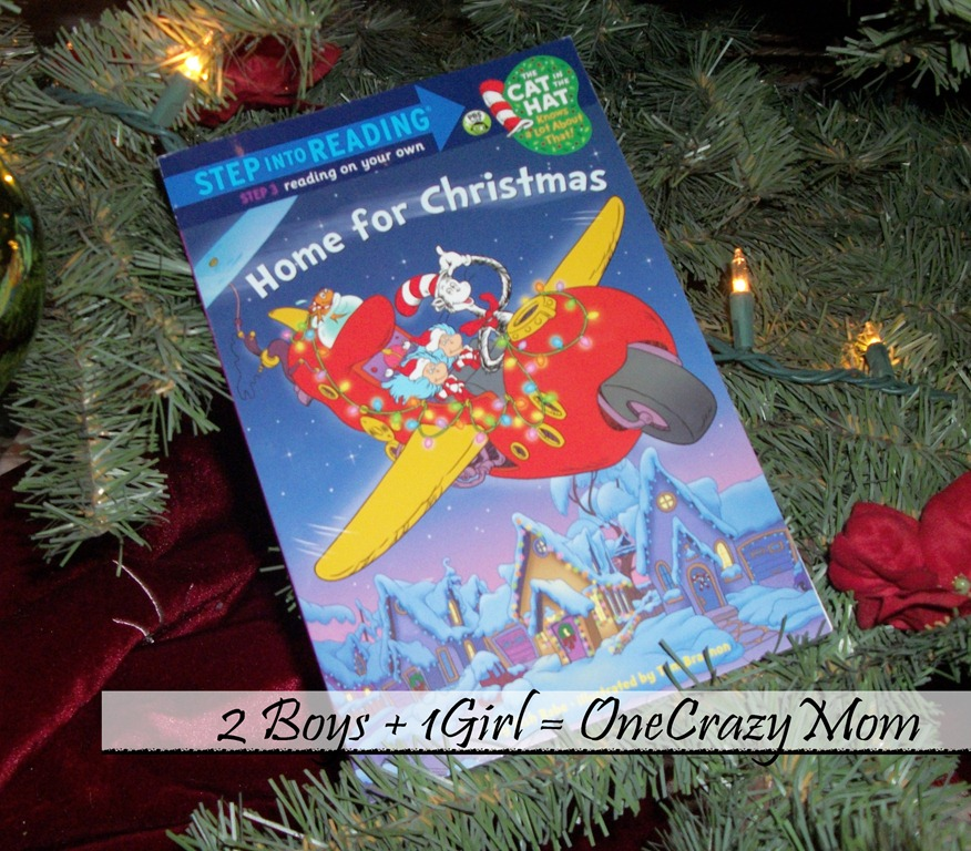 Christmas Countdown Book December 20