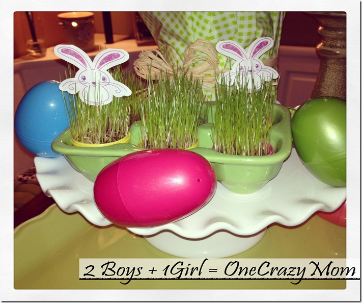 Easter Fun Craft for thekids grow your own Easter Egg Grass