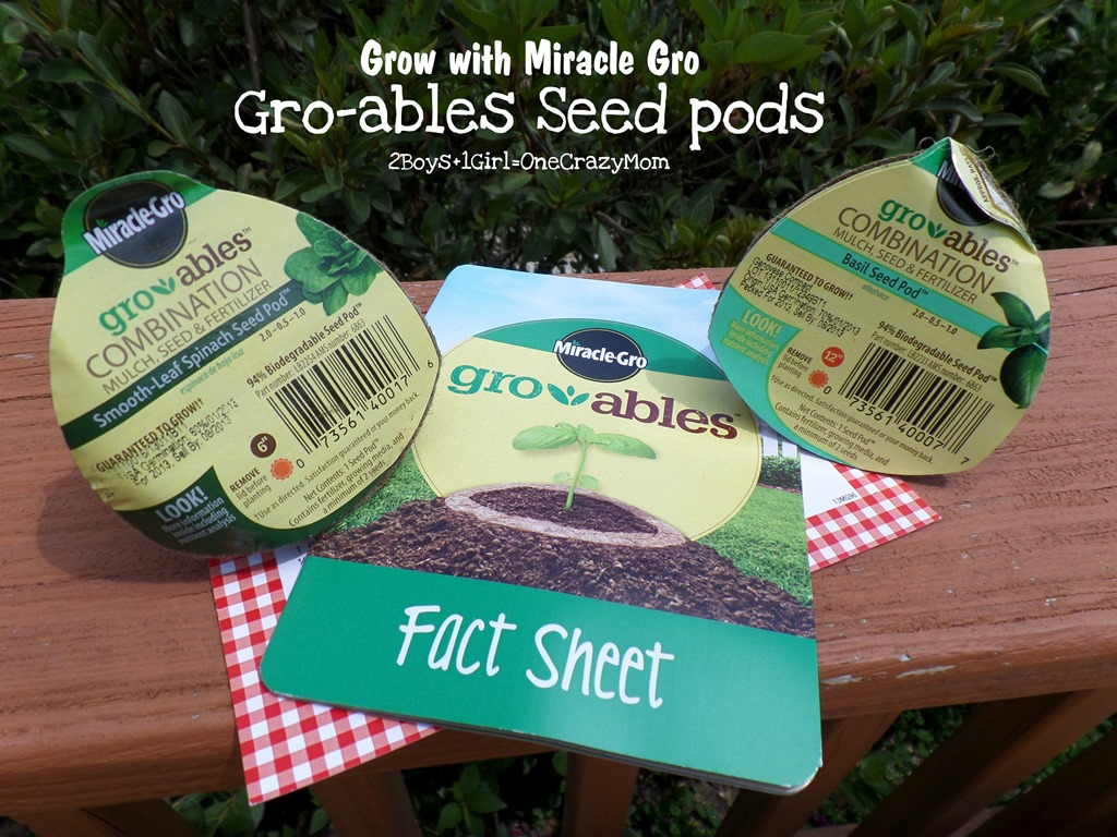 You can grow your own Herbs even without a green thumb thanks to Miracle Gro #Review
