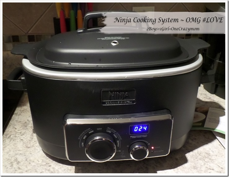 ninja cooking system recipe book pdf