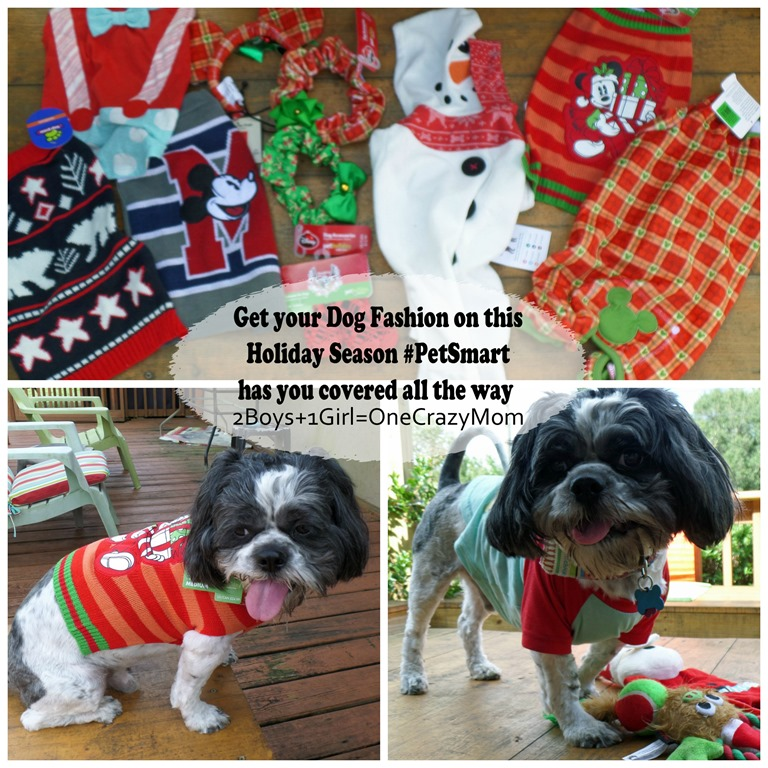 Let your Dogs be your Santa helpers this year and let them be in style #DogOutfits