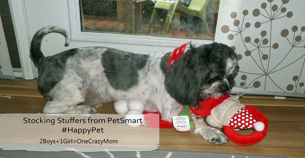 Spoil your pet with fun Stocking Stuffers from PetSmart and you will have a #HappyPet