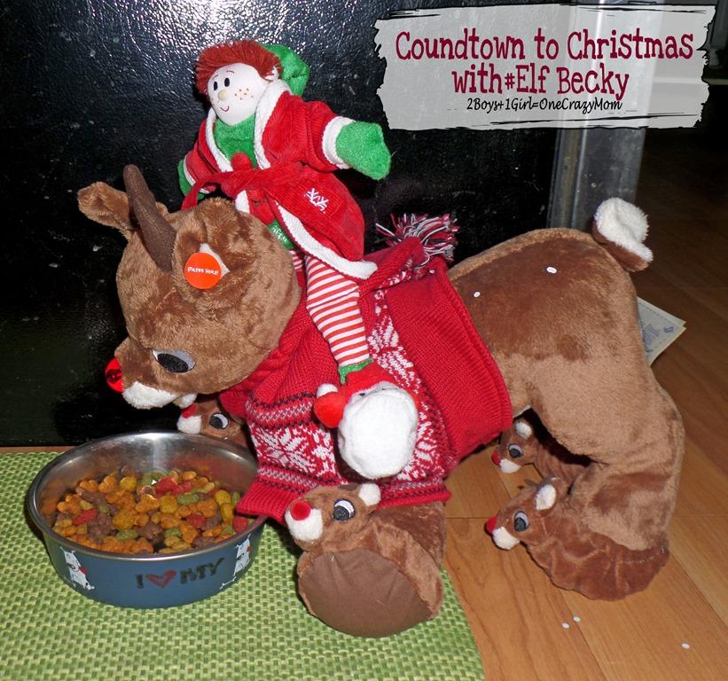 Elf Magic Countdown to Christmas Day 7 #Elfcapades