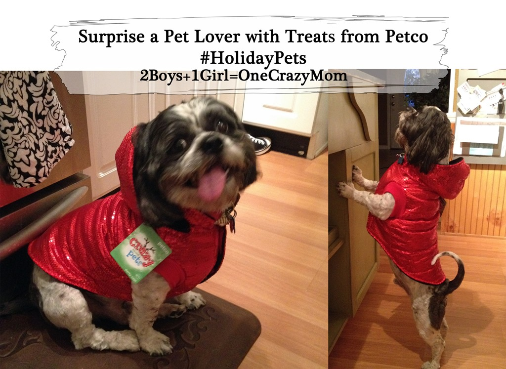 Surprise a Pet Lover with Treats from Petco #HolidayPets and stocking stuffers