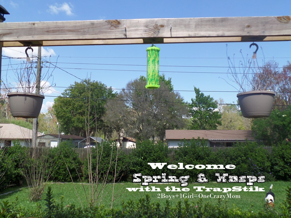 Welcome spring and the wasps or bugs with the TrapStik #Review