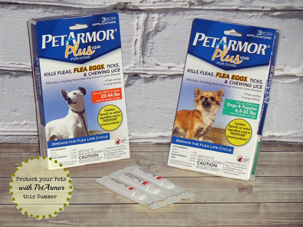 Keep your Pets Happy and Healthy this Summer with #PetArmorProtects