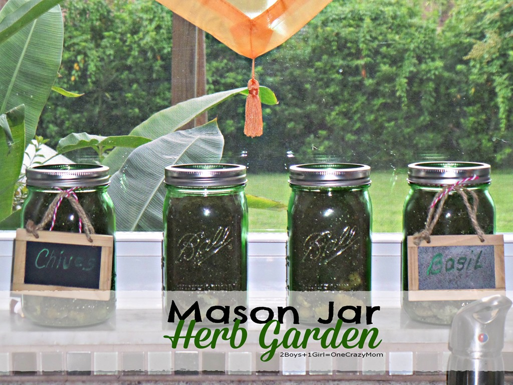 Create your very own Herb Garden in a Mason Jar #DIY Project