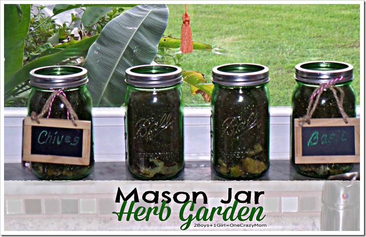 Create your very own Herb Garden in a Mason Jar #DIY
