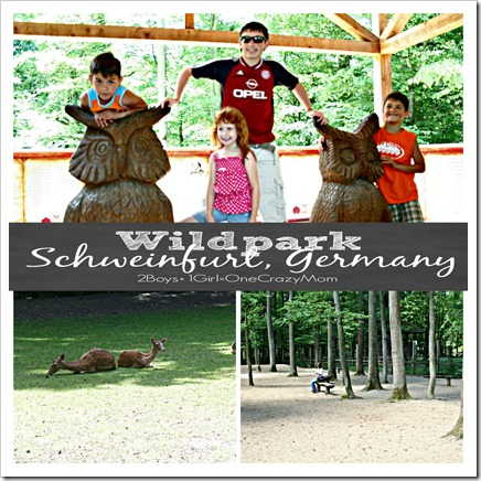 Can't beat a free Wildpark in Schweinfurt Germany copy