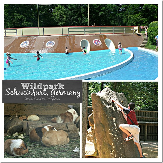 So much to do and see at the Wildpark in Schweinfurt Germany copy
