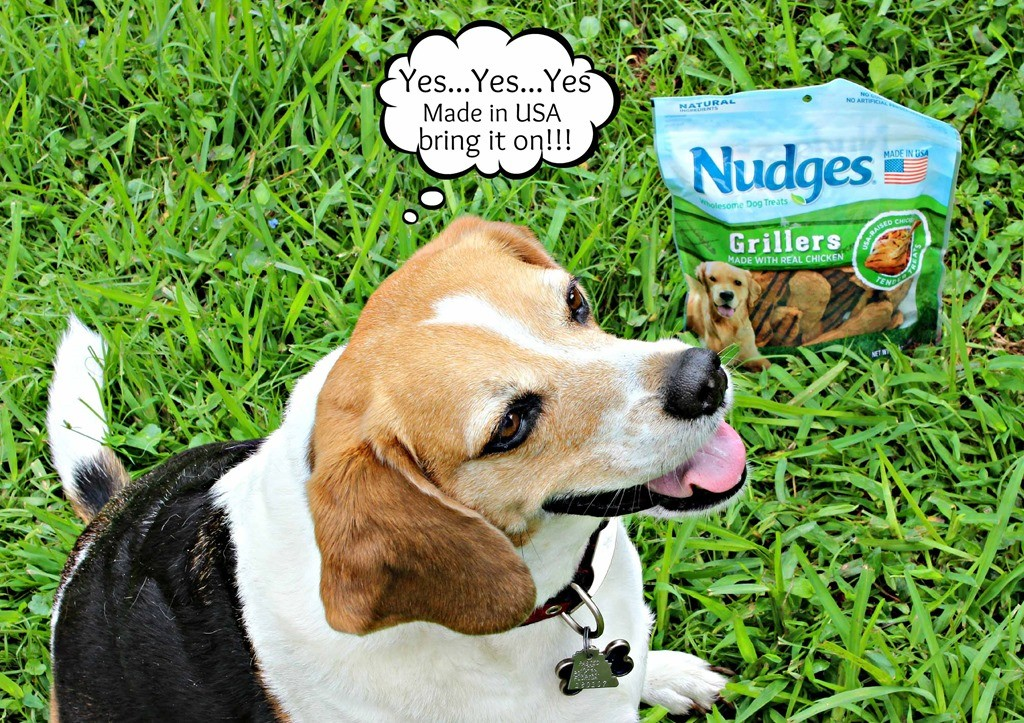 Spoiling our peanut gallery and keeping them safe this summer #NudgeThemBack