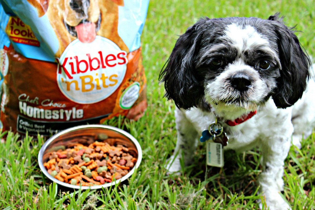 It does matter what you feed your furry family members #DogOwnerKnows