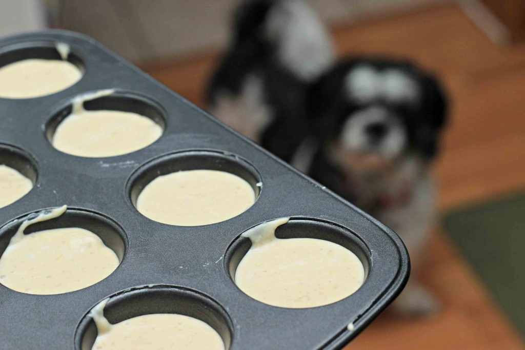 Banana Peanut Smoothie frozen treats for dogs and humans alike #Recipe