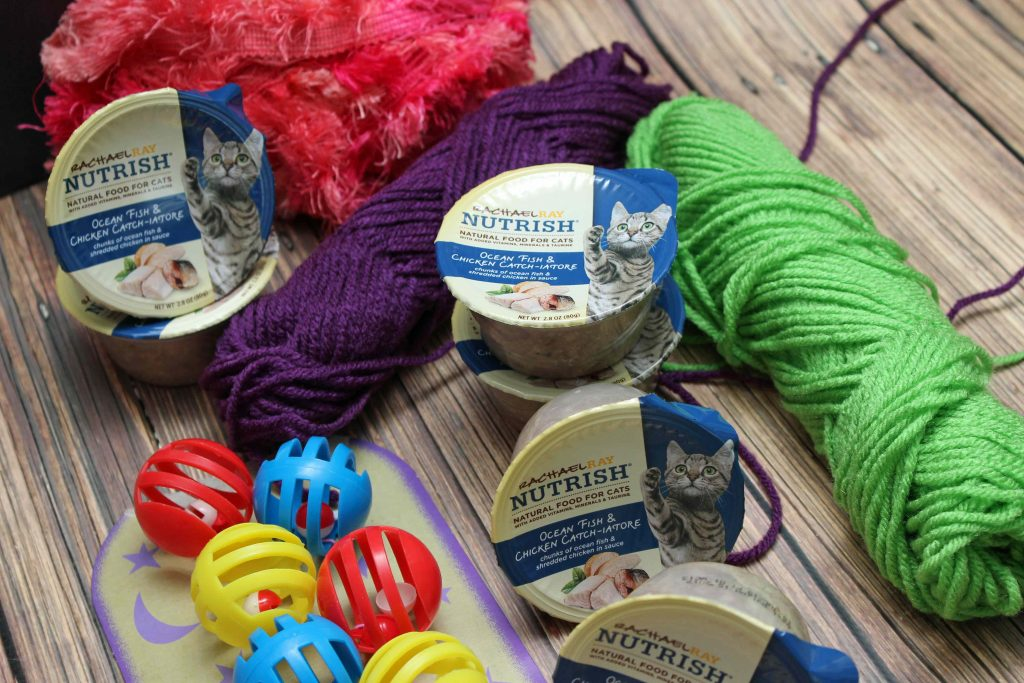 #NutrishCatCrafts-are-easy-to-make-and-lots-of-fun