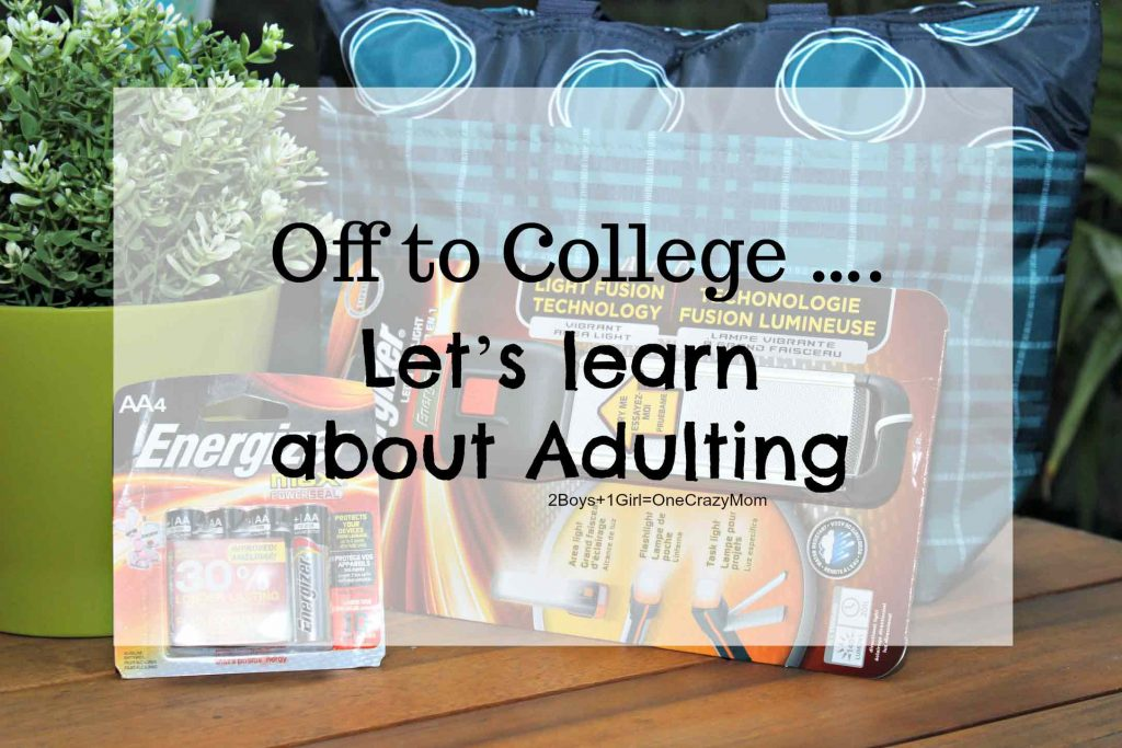 Let's Learn about Adulting today